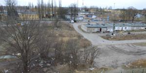 art-baraki2